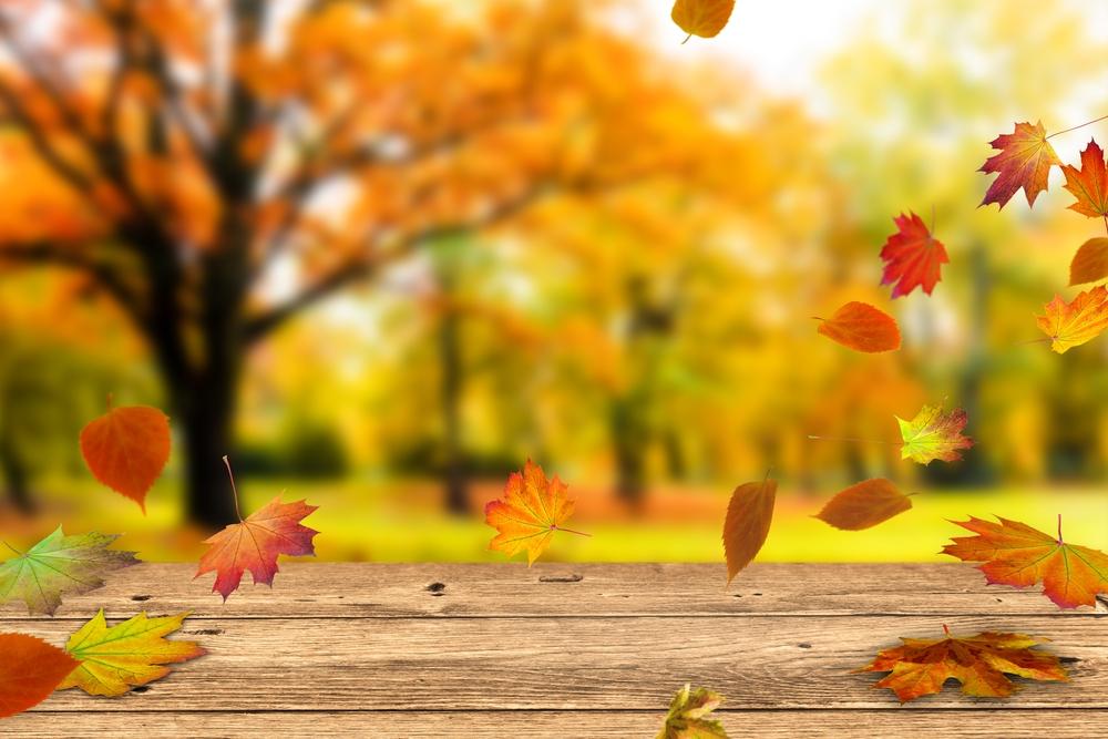 Boisz się, że dopadnie Cię jesienna chandra? Są na nią sposoby!
